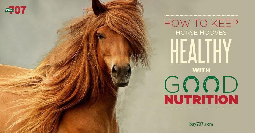 hoof health