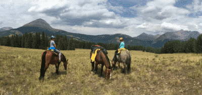 The Burro trails in Colorado top out at 10,500 ft in elevation. Perfect for riding horses in the mountains.