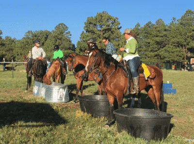 Endurance Riders Focusing on Hydrating Horses