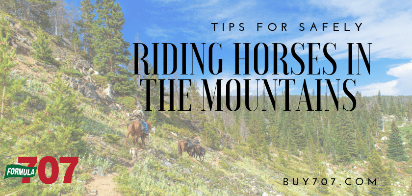 Safely Riding Horses in the Mountains - buy707.com