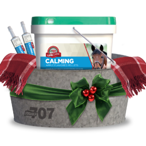 Holiday Stress Relief Bundle