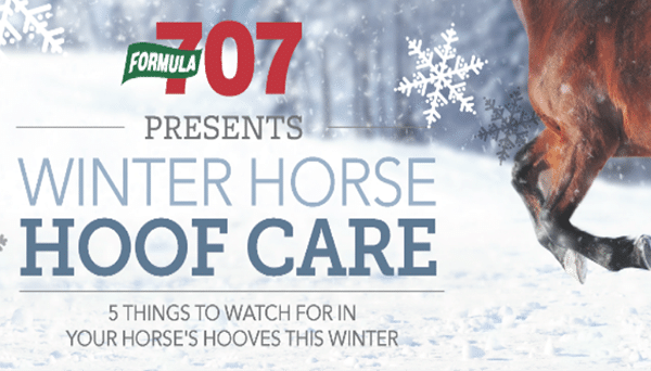 http://info.buy707.com/winter-horse-hoof-care